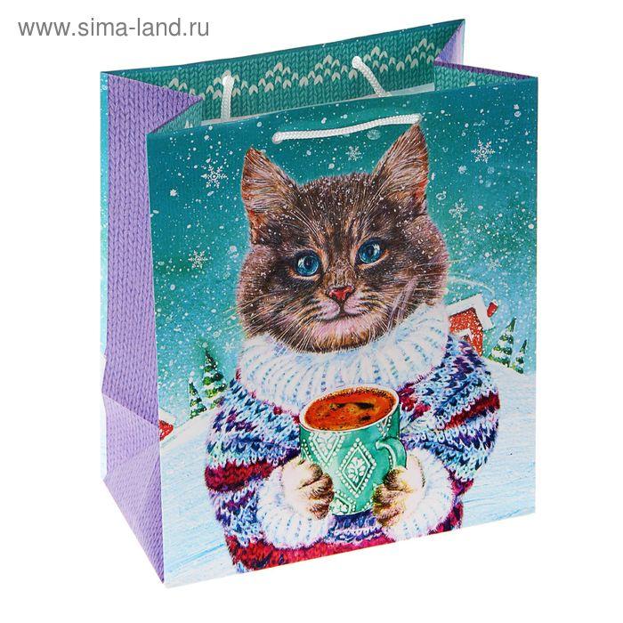 """Пакет подарочный """"Котофеич"""", 24 х 20.3 х 11.5 см"""