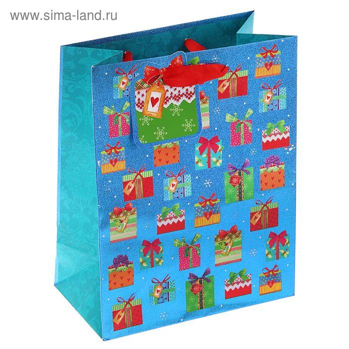 "Пакет подарочный ""Подарочки"" люкс, 23 х 17.8 х 9.8 см"
