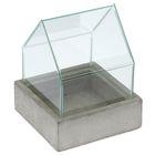 """Террариум """"DOMUS"""", M бетон + стекло"""