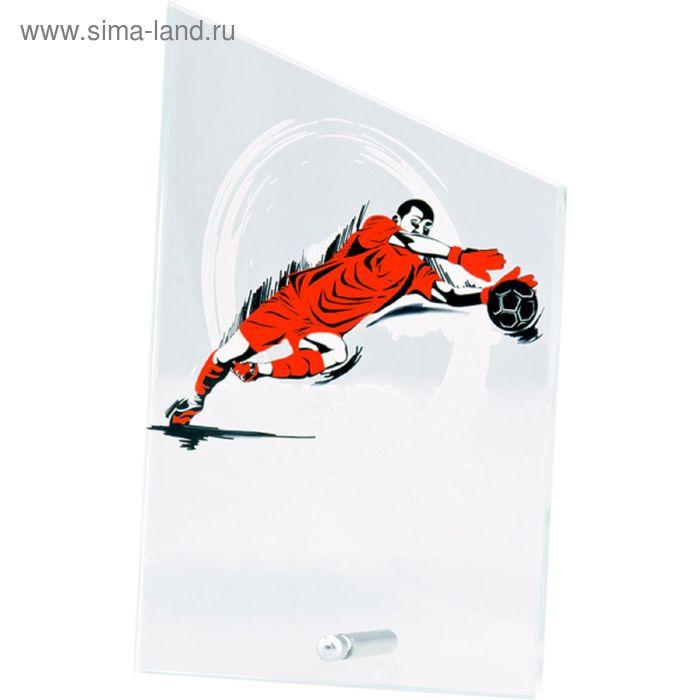 Награда стеклянная Футбол-вратарь 12.5*20.5 см, SG1020/GK