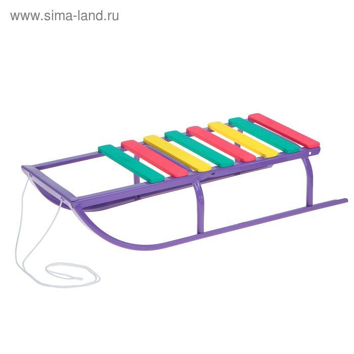 "Санки ""Вятские-1ш"" без спинки, цвет фиолетовый"