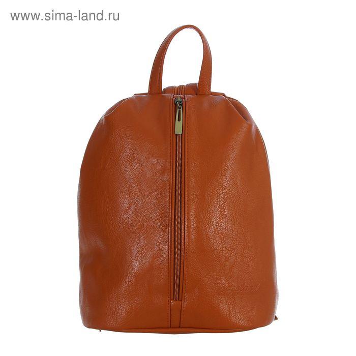 Рюкзак молодёжный на молнии, 1 отдел, 1 наружный карман, коричневый