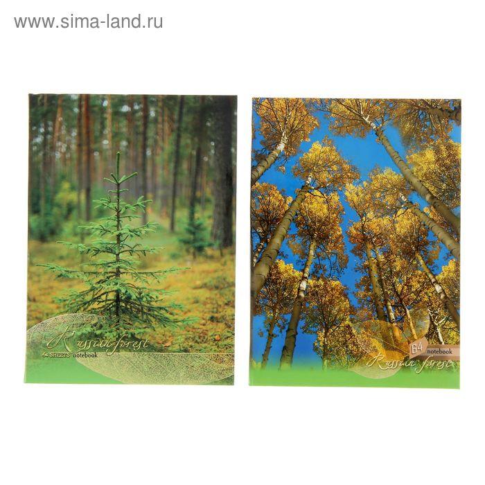 """Бизнес-блокнот интегральная обложка А6, 64 листа """"Русский лес"""", матовая ламинация, микс"""