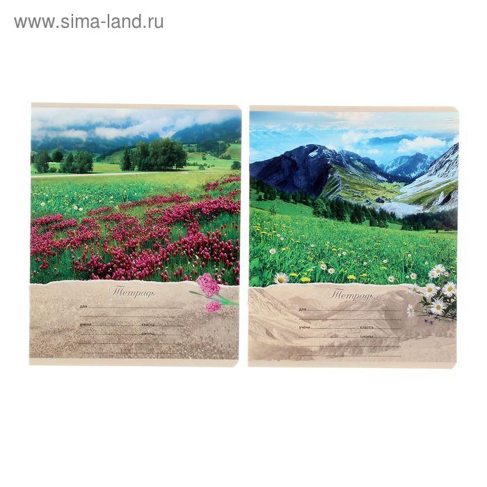 """Тетрадь 12 листов линейка """"Красота природы"""", картонная обложка, МИКС"""