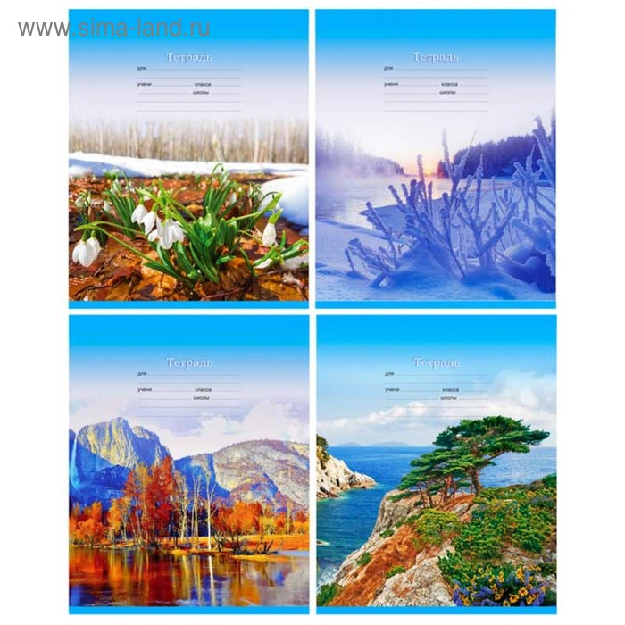 """Тетрадь 12 листов линейка """"Seasons"""", картонная обложка, МИКС"""