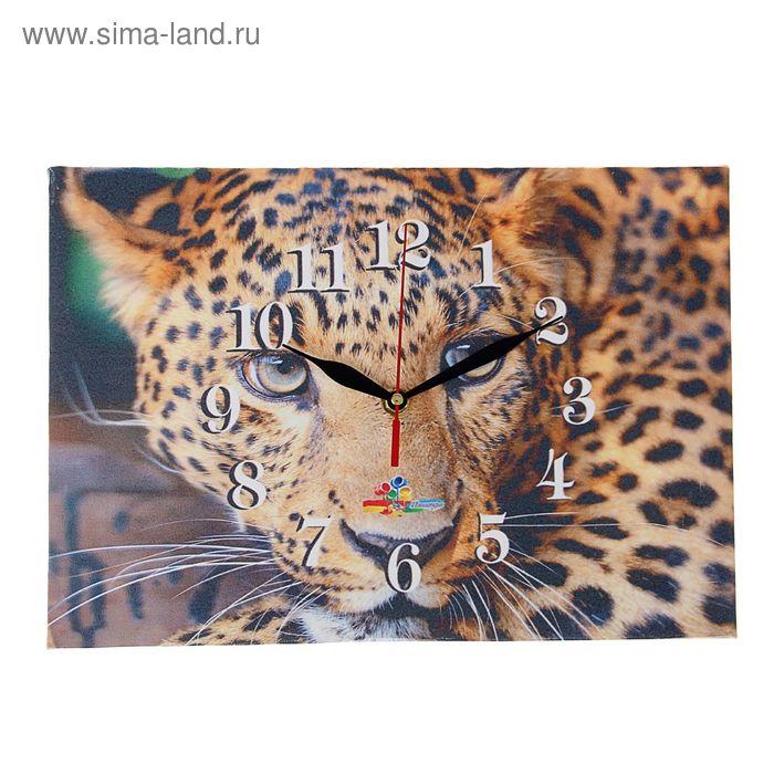 """Часы на холсте прямоугольные """"Леопард"""", 25х35 см"""