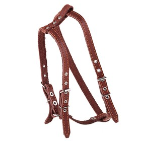 """Harness leather """"Walking"""", 1.5 cm, neck circumference 35-50 cm, chest girth 60-68 cm"""