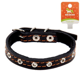 Collar leather synthetic padding, dimensionless, 37 x 1.5 cm mix colors