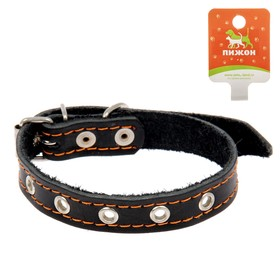 Leather dog collar single layer dimensionless, 45 x 2 cm mix colors
