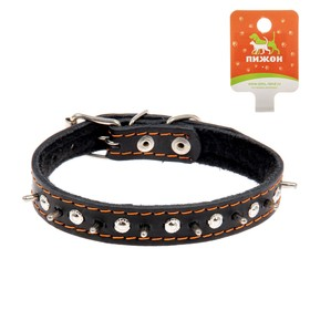 """Collar leather synthetic padding """"Hedgehog"""", 46 x 2 cm MIX COLORS AND TYPES"""