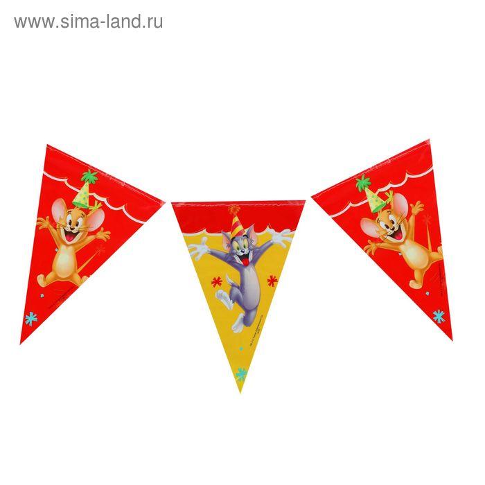 """Гирлянда-вымпелы 2,3 м """"Том и Джерри"""" / Tom and Jerry"""