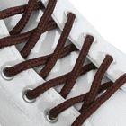 Шнурки для обуви, пара, круглые, d = 5 мм, 180 см, цвет коричневый