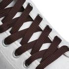 Шнурки для обуви, плоские, 7 мм, 120 см, пара, цвет коричневый
