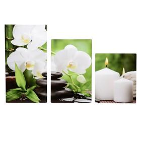 "Картина модульная на подрамнике  ""Орхидея со свечами"" 30х35,30х46,30х56 см; 90х56 см"