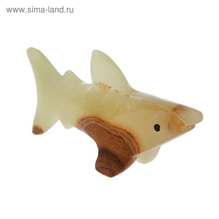 """Сувенир Акула 4"""""""