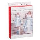 Набор для шитья: Новогодняя кукла «Снегурочка», 16,5 х 22,5 х 3,5 см