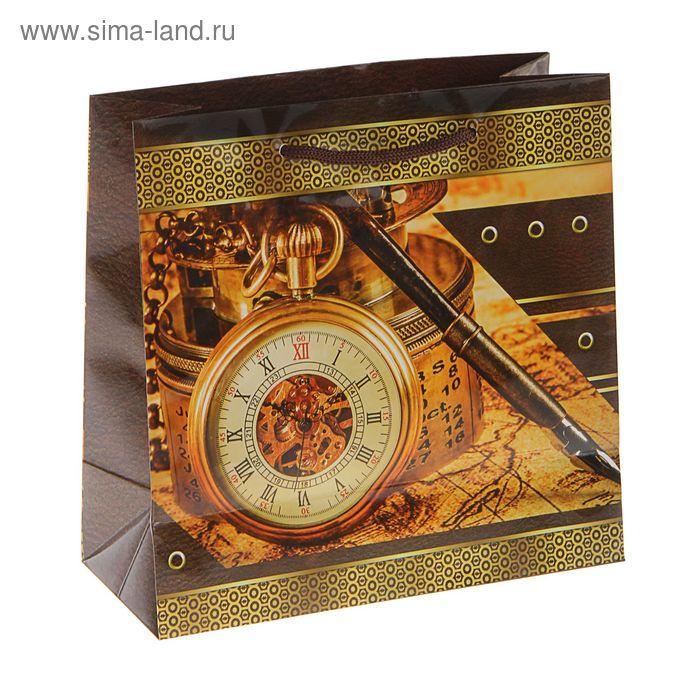 """Пакет подарочный """"Время-золото!"""" 23 х 22,5 х 10 см"""