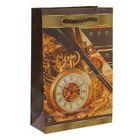 """Пакет подарочный """"Время-золото!"""" 26,5 х 16,5 х 7 см"""
