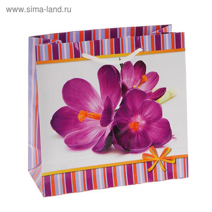 """Пакет подарочный """"Ночная красавица"""" 23 х 22.5 х 10 см"""