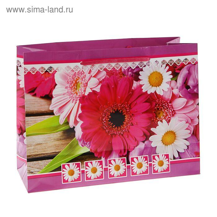 "Пакет подарочный ""Виола"" 23 х 22,5 х 10 см"