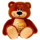 Мягкая игрушка «Медведь Сластена», цвета МИКС - фото 4471684