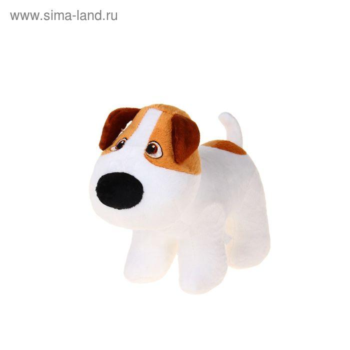 Мягкая игрушка «Собачка Фоксик»