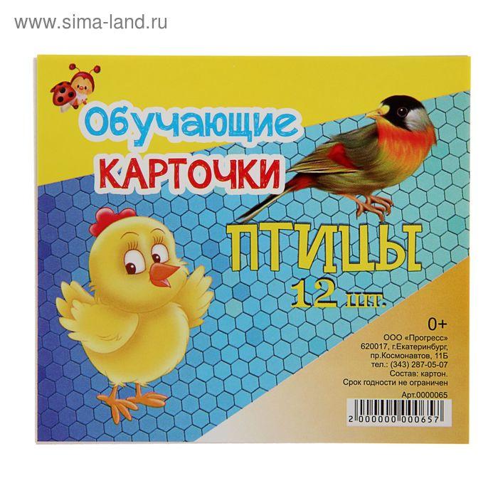 """Обучающие карточки """"Птицы"""" 12шт"""