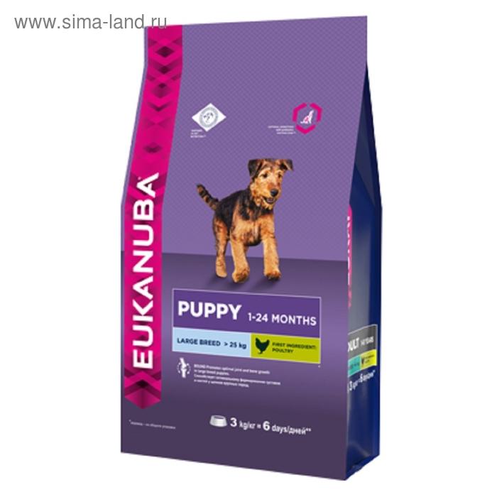 Сухой корм EUK Dog для щенков крупных пород, 3 кг
