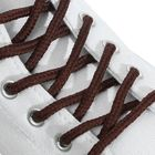 Шнурки для обуви, d = 5 мм, 160 см, пара, цвет коричневый