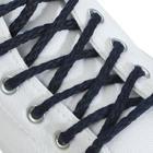 Шнурки для обуви, круглые, d = 5 мм, 160 см, пара, цвет синий