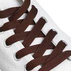 Шнурки для обуви плоские, ширина 9мм, 160см, цвет коричневый