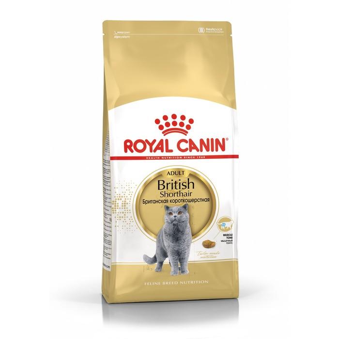 Сухой корм RC British Shorthair для британских кошек, 4 кг