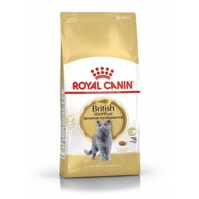 Сухой корм RC British Shorthair для британских кошек, 10 кг