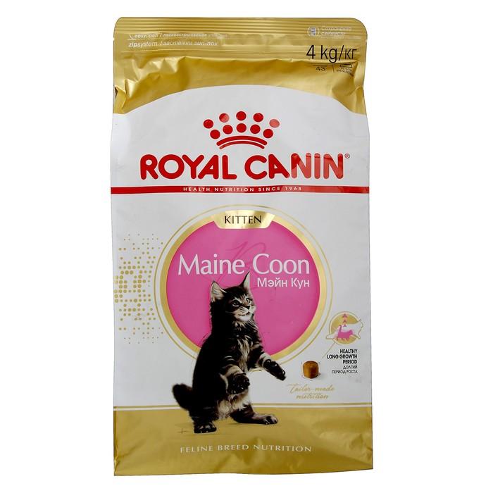 Сухой корм RC Kitten Maine Coon для котят крупных пород, 4 кг