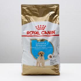 Сухой корм RC Labrador Junior для щенков лабрадора, 12 кг