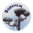 Значок закатной «Воронеж»
