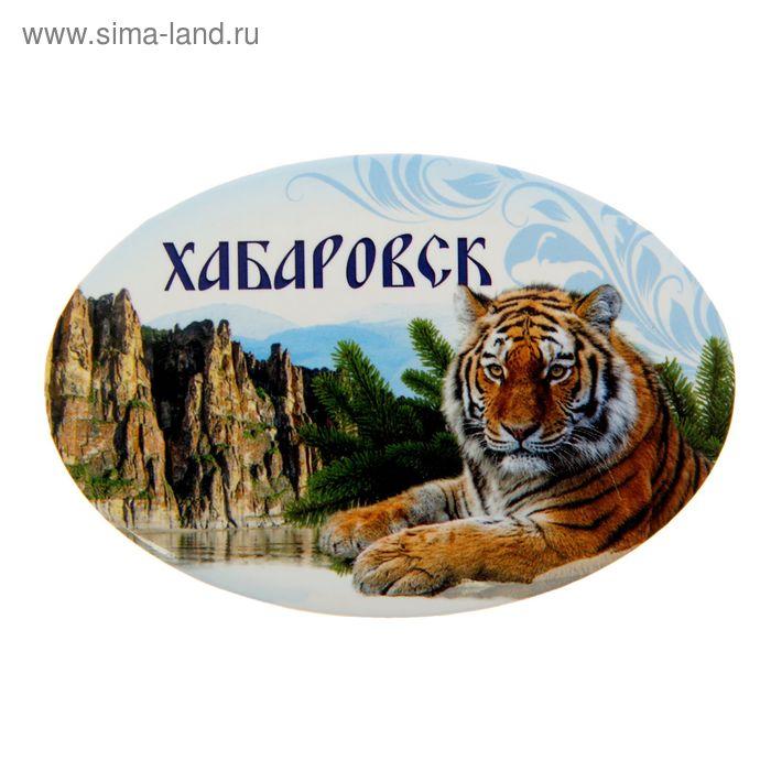 """Магнит-открывашка """"Хабаровск"""""""