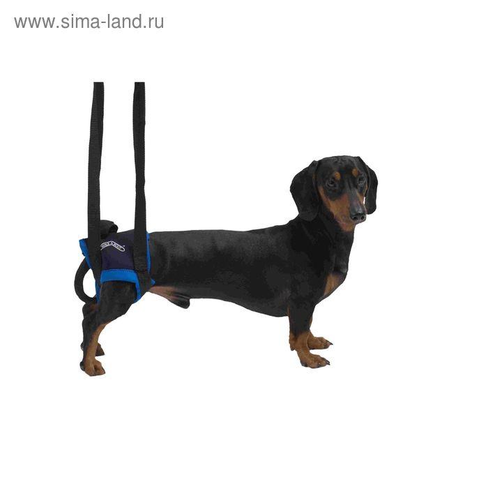 Вожжи Kruuse Walkabout harness на задние конечности, M