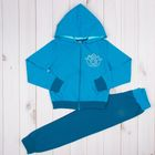 Комплект (толстовка, брюки) для девочки, рост 98-104 см, цвет голубой (арт. 205-М_Д)