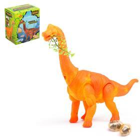 """Динозавр """"Брахиозавр травоядный"""", работает от батареек, откладывает яйца, с проектором"""