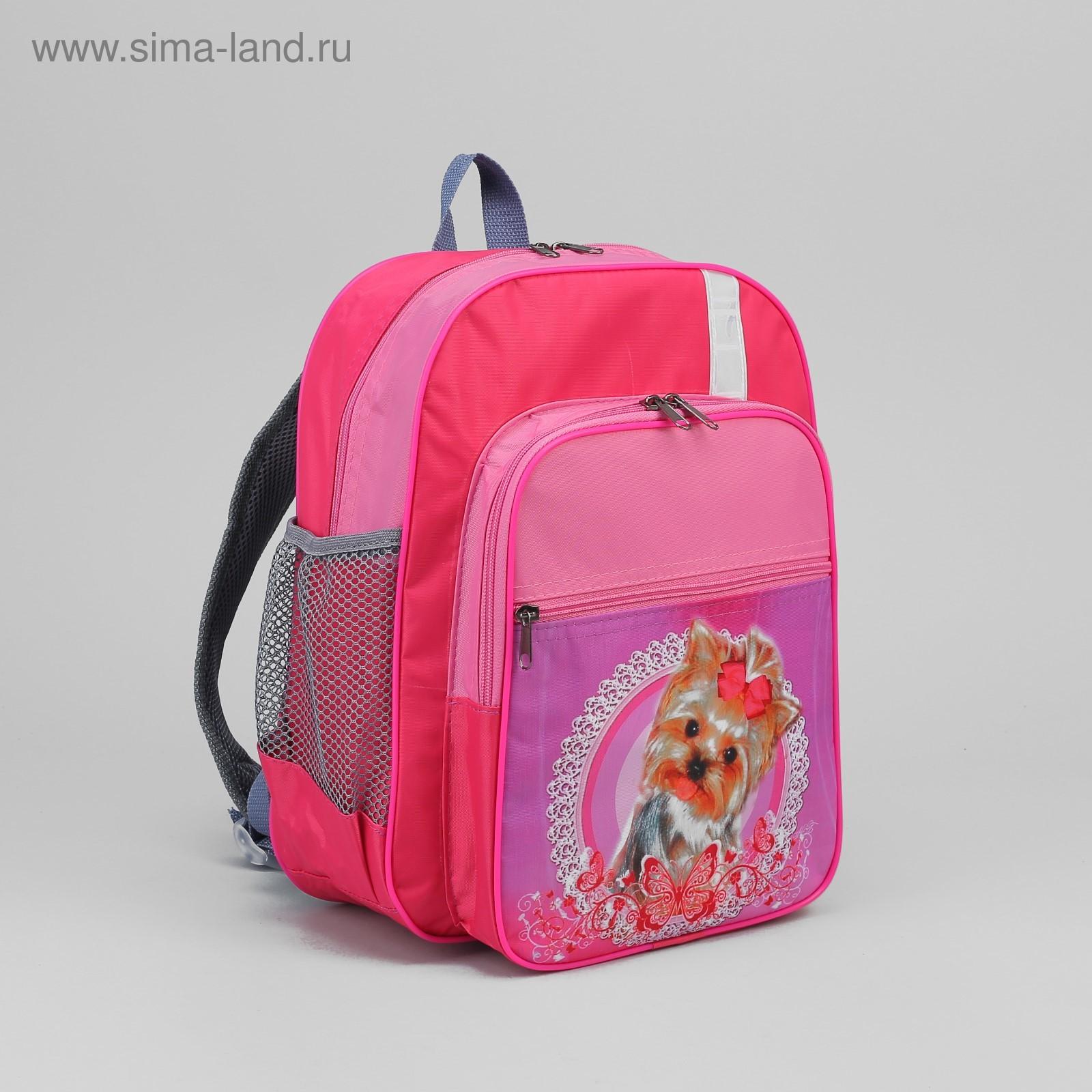 0a1b43b85db7 Рюкзак школьный на молнии, 2 отдела, 3 наружных кармана, розово-фиолетовый