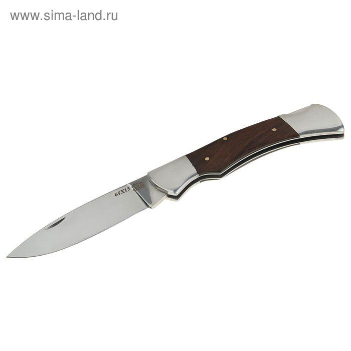 """Нож складной """"Пионер"""", сталь 65х13"""