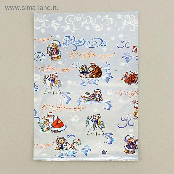 """Пакет подарочный """"Снегурочка new"""" 25 х 40 см, цветной металлизированный рисунок"""
