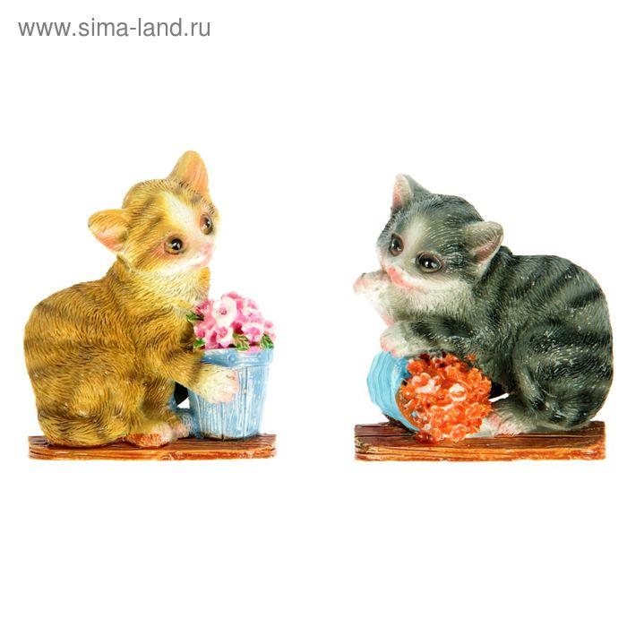 """Магнит """"Котёнок с кашпо"""", МИКС"""