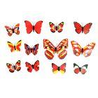 """Магнит """"Бабочка разноцветная"""", набор 12 шт., МИКС"""