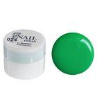 Гель-краска для ногтей трёхфазный LED/UV, 8мл, цвет 24 зелёный