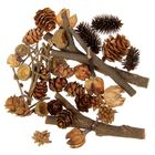 Набор природного декора «Дары леса», - фото 1665507