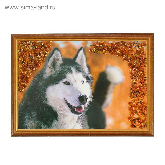 Картина янтарь 21х30 см Собаки микс