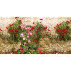 Фотосетка, 300 × 158 см, с фотопечатью, «Камень и дикие розы»