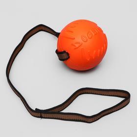 """Мяч для дрессировки """"ДогЛайк"""" с лентой, большой, диаметр 10 см, длина ленты 65 см"""